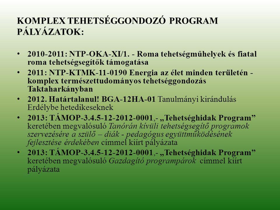 KOMPLEX TEHETSÉGGONDOZÓ PROGRAM PÁLYÁZATOK: 2010-2011: NTP-OKA-XI/1. - Roma tehetségműhelyek és fiatal roma tehetségsegítők támogatása 2011: NTP-KTMK-