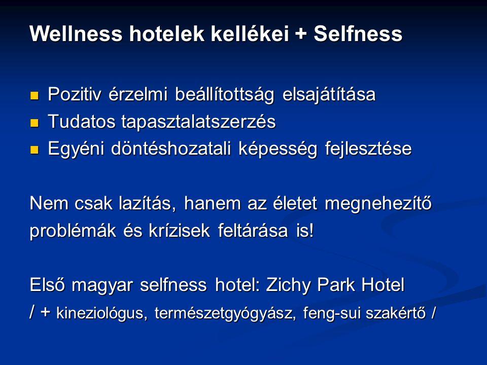 Wellness hotelek kellékei + Selfness Pozitiv érzelmi beállítottság elsajátítása Pozitiv érzelmi beállítottság elsajátítása Tudatos tapasztalatszerzés Tudatos tapasztalatszerzés Egyéni döntéshozatali képesség fejlesztése Egyéni döntéshozatali képesség fejlesztése Nem csak lazítás, hanem az életet megnehezítő problémák és krízisek feltárása is.