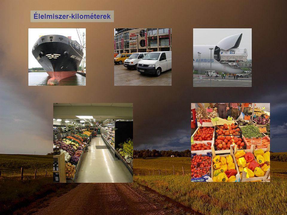 Élelmiszer-kilométerek