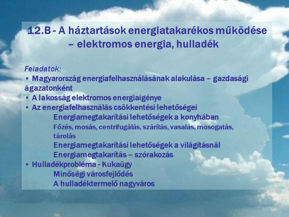 12.B - A háztartások energiatakarékos működése – elektromos energia, hulladék Feladatok: Magyarország energiafelhasználásának alakulása – gazdasági ágazatonként A lakosság elektromos energiaigénye Az energiafelhasználás csökkentési lehetőségei Energiamegtakarítási lehetőségek a konyhában Főzés, mosás, centrifugálás, szárítás, vasalás, mosogatás, tárolás Energiamegtakarítási lehetőségek a világításnál Energiamegtakarítás – szórakozás Hulladékprobléma - Kukaügy Minőségi városfejlődés A hulladéktermelő nagyváros