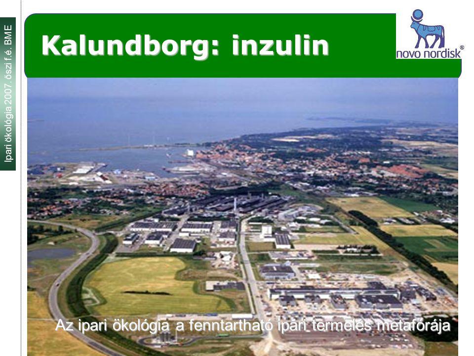 Ipari ökológia 2007. őszi f.é. BME 2007.09. 26. 2 Kalundborg: inzulin Az ipari ökológia a fenntartható ipari termelés metafórája