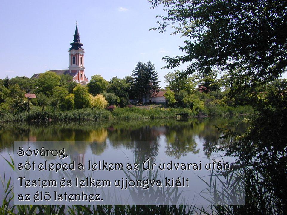 Sóvárog, sõt eleped a lelkem az Úr udvarai után. Testem és lelkem ujjongva kiált az élõ Istenhez.