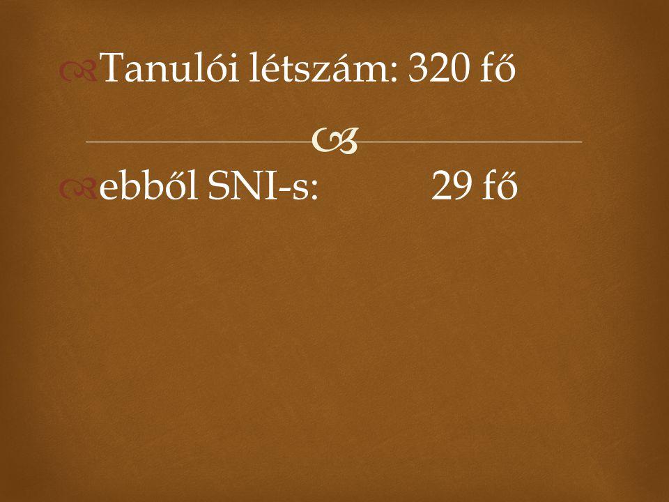   Tanulói létszám: 320 fő  ebből SNI-s: 29 fő