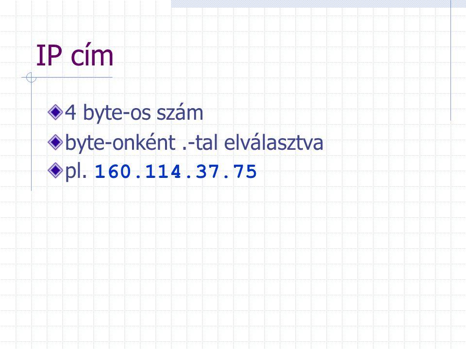 Domain név - IP-cím közötti megfeleltetés: hálózat szervereivel a DNS (Domain Name System) segítségével Internet kapcsolat ellenőrzése: ping paranccsal (DOS, Windows, UNIX alatt egyaránt, ha TCP/IP protokoll csomag telepítve van): ping domain-név pl.