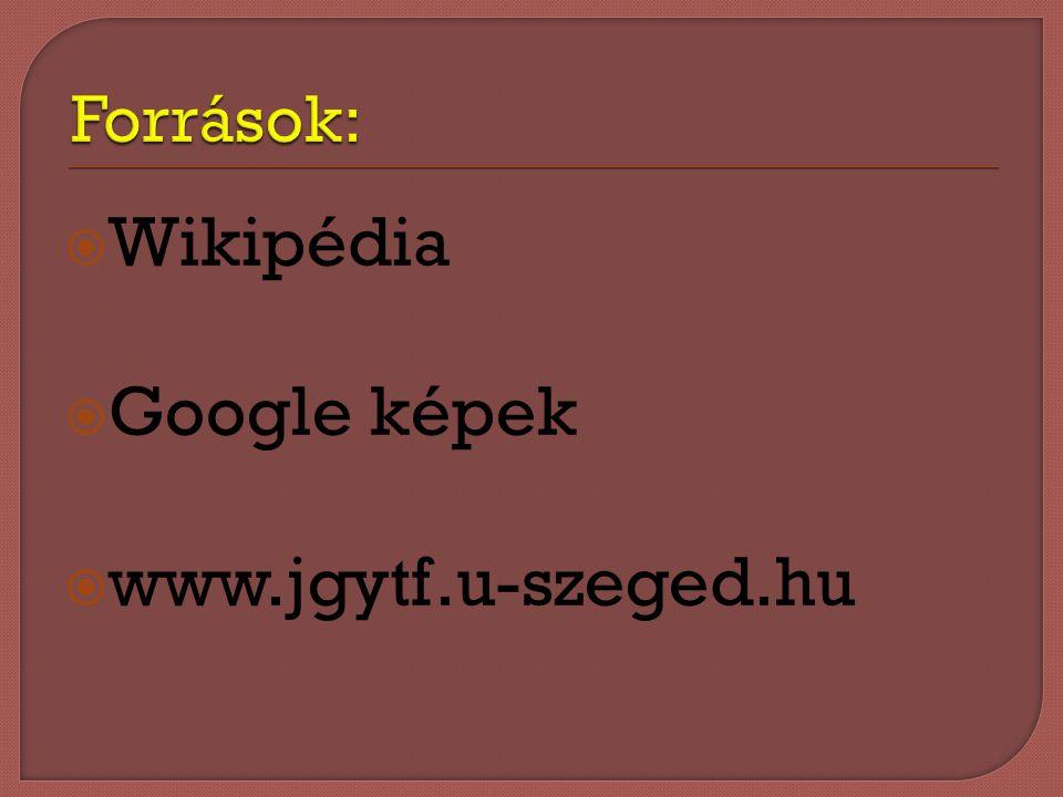 WWikipédia GGoogle képek wwww.jgytf.u-szeged.hu