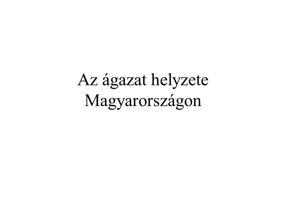 Az ágazat helyzete Magyarországon
