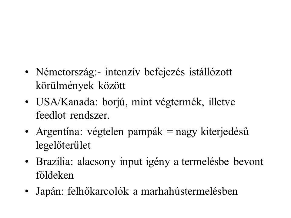 Németország:- intenzív befejezés istállózott körülmények között USA/Kanada: borjú, mint végtermék, illetve feedlot rendszer. Argentína: végtelen pampá