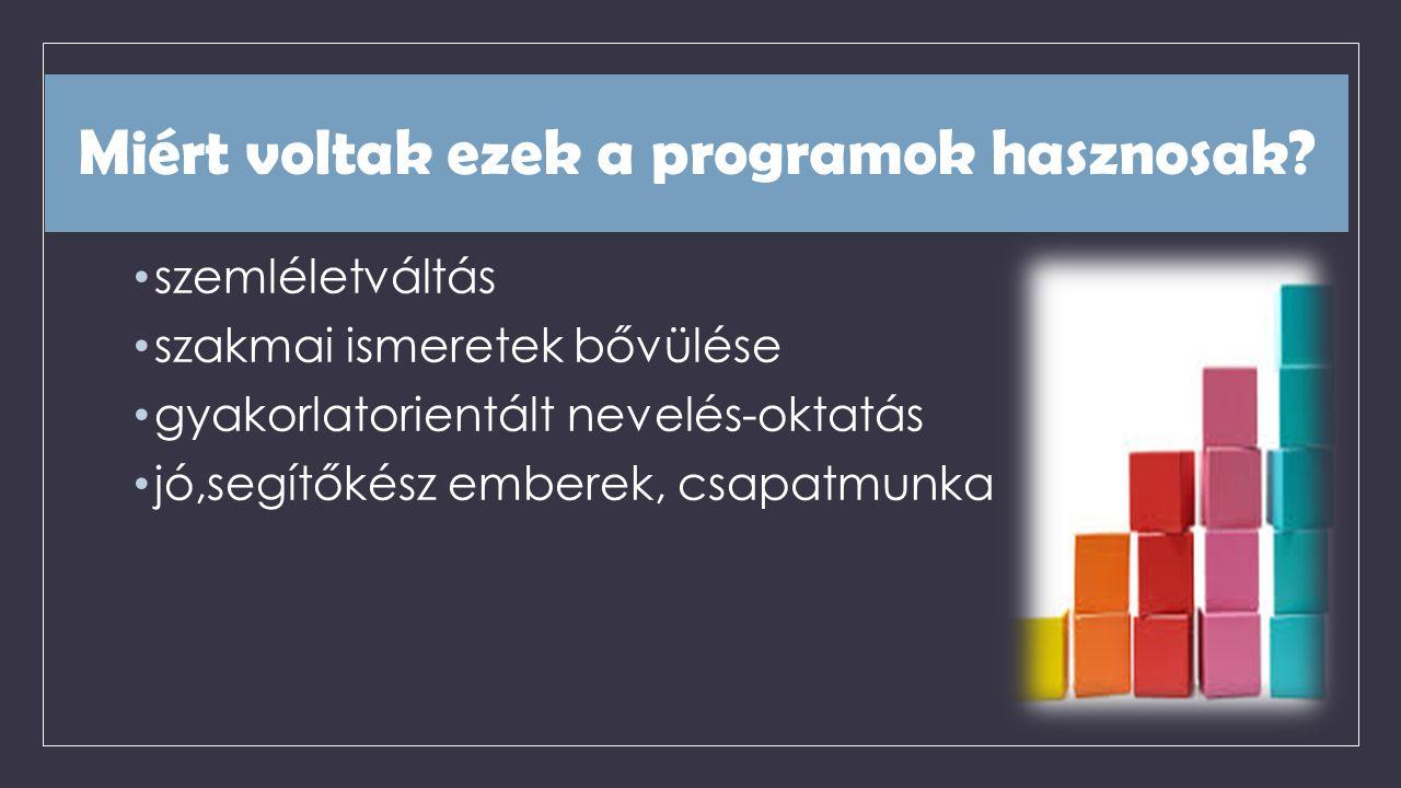 Miért voltak ezek a programok hasznosak.