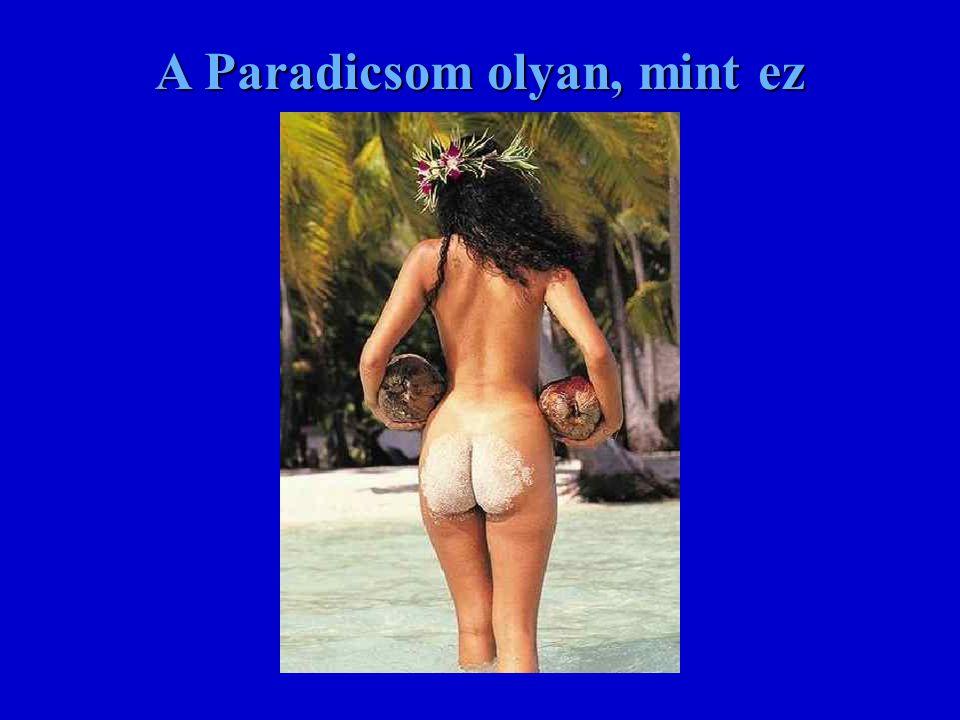 A Paradicsom olyan, mint ez