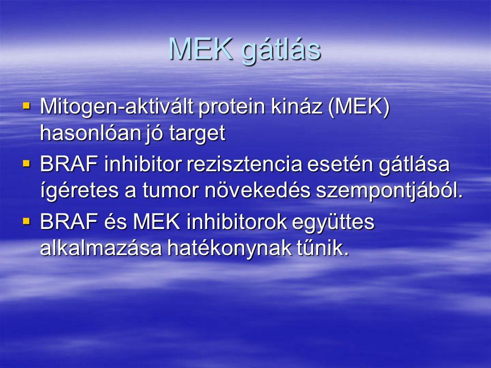 MEK gátlás  Mitogen-aktivált protein kináz (MEK) hasonlóan jó target  BRAF inhibitor rezisztencia esetén gátlása ígéretes a tumor növekedés szempont