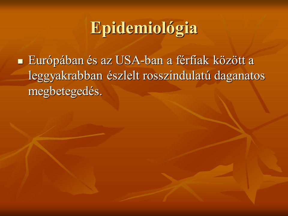 Epidemiológia Európában és az USA-ban a férfiak között a leggyakrabban észlelt rosszindulatú daganatos megbetegedés. Európában és az USA-ban a férfiak