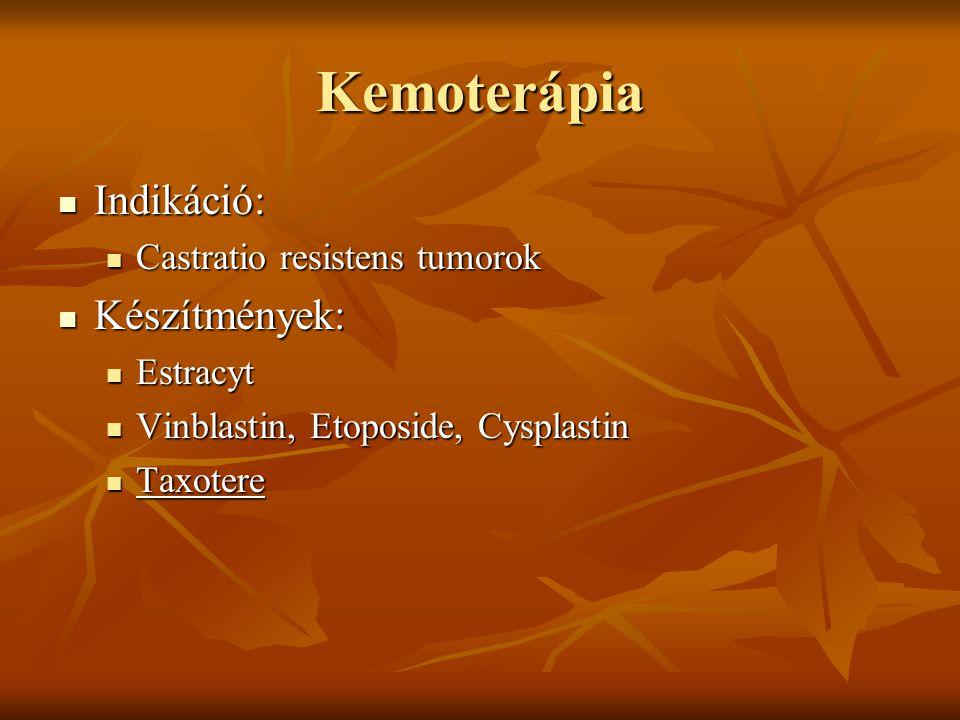 Kemoterápia Indikáció: Indikáció: Castratio resistens tumorok Castratio resistens tumorok Készítmények: Készítmények: Estracyt Estracyt Vinblastin, Et