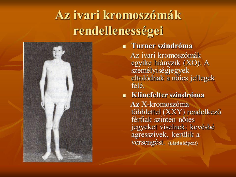 Az ivari kromoszómák rendellenességei Turner szindróma Turner szindróma Az ivari kromoszómák egyike hiányzik (XO). A személyiségjegyek eltolódnak a nő