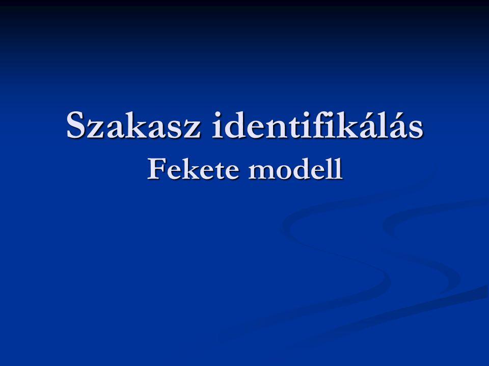 Szakasz identifikálás Fekete modell