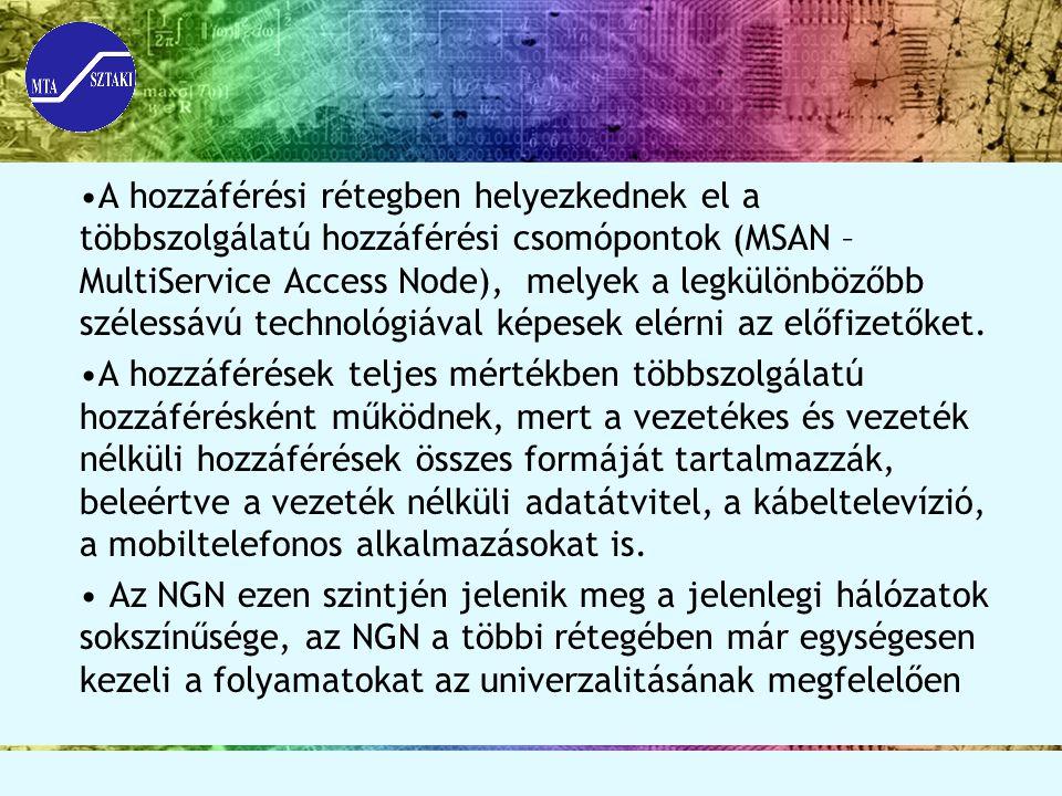 A hozzáférési rétegben helyezkednek el a többszolgálatú hozzáférési csomópontok (MSAN – MultiService Access Node), melyek a legkülönbözőbb szélessávú technológiával képesek elérni az előfizetőket.