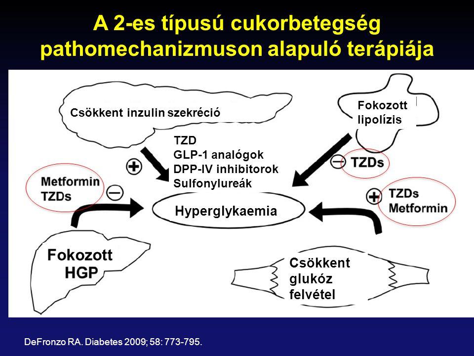 A 2-es típusú cukorbetegség pathomechanizmuson alapuló terápiája DeFronzo RA. Diabetes 2009; 58: 773-795. Csökkent inzulin szekréció Fokozott lipolízi
