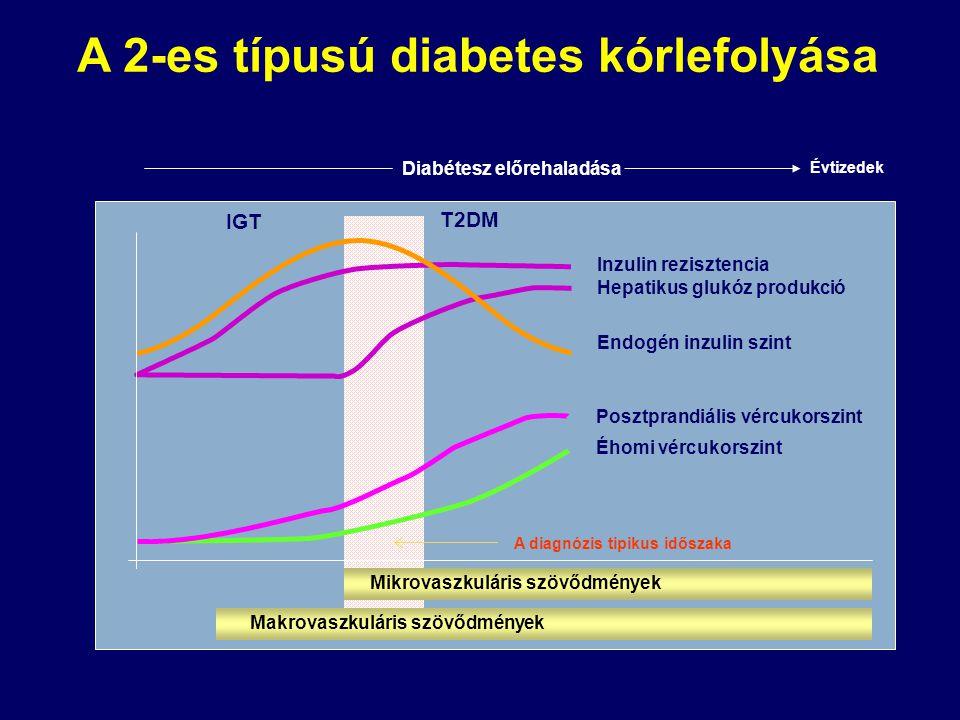 Inzulin rezisztencia Hepatikus glukóz produkció Endogén inzulin szint Posztprandiális vércukorszint Éhomi vércukorszint A diagnózis tipikus időszaka D