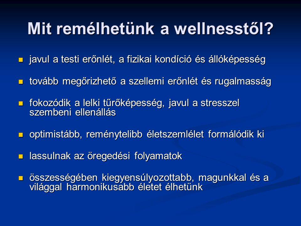 Mit remélhetünk a wellnesstől.