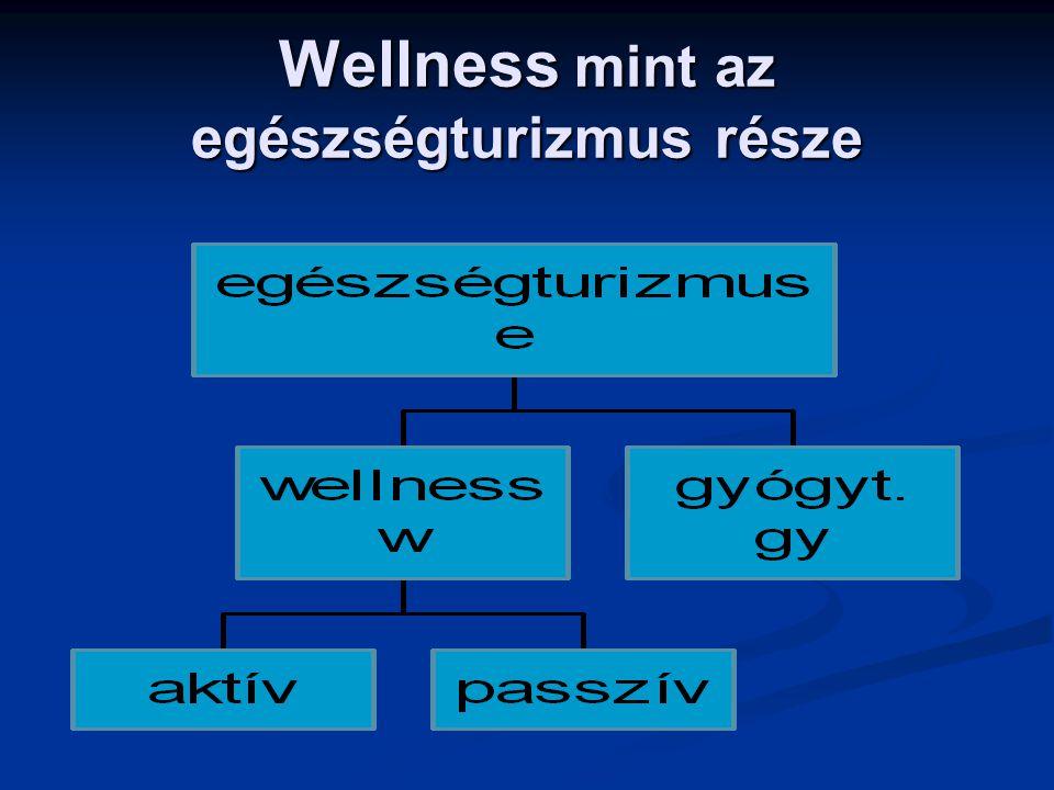 Wellness mint az egészségturizmus része