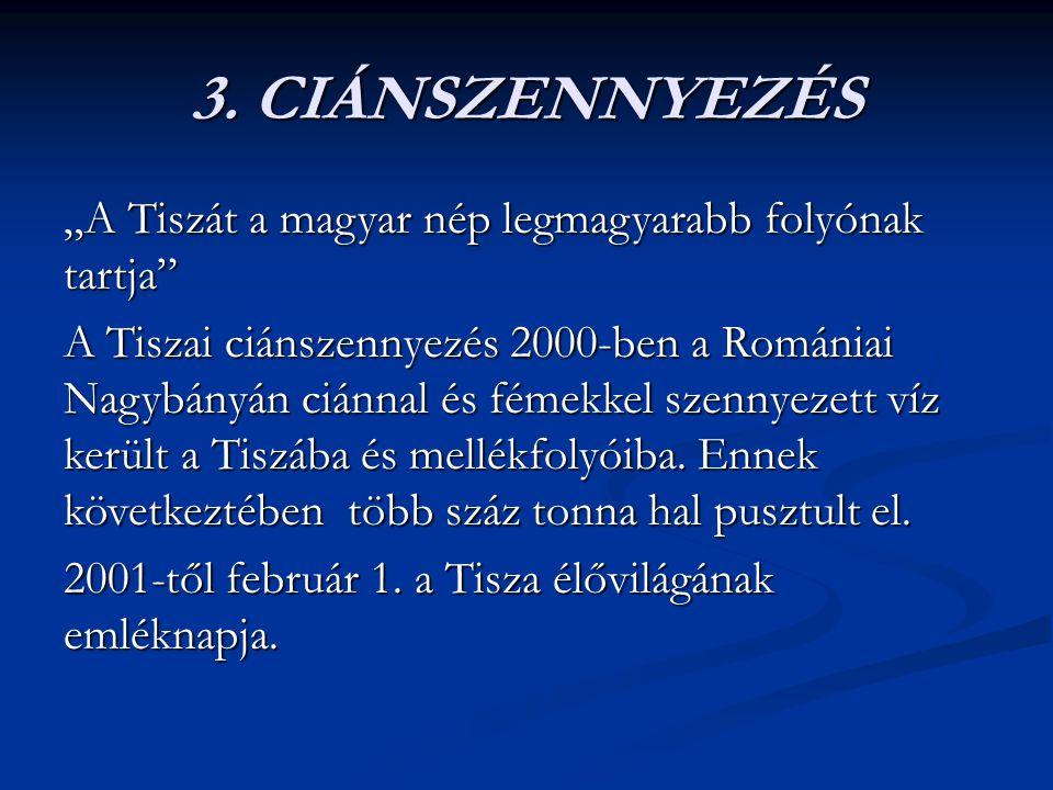 """3. CIÁNSZENNYEZÉS """"A Tiszát a magyar nép legmagyarabb folyónak tartja"""" A Tiszai ciánszennyezés 2000-ben a Romániai Nagybányán ciánnal és fémekkel szen"""
