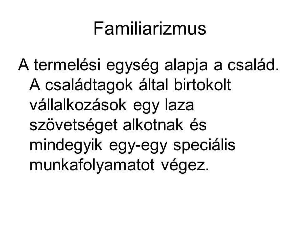 Familiarizmus A termelési egység alapja a család. A családtagok által birtokolt vállalkozások egy laza szövetséget alkotnak és mindegyik egy-egy speci