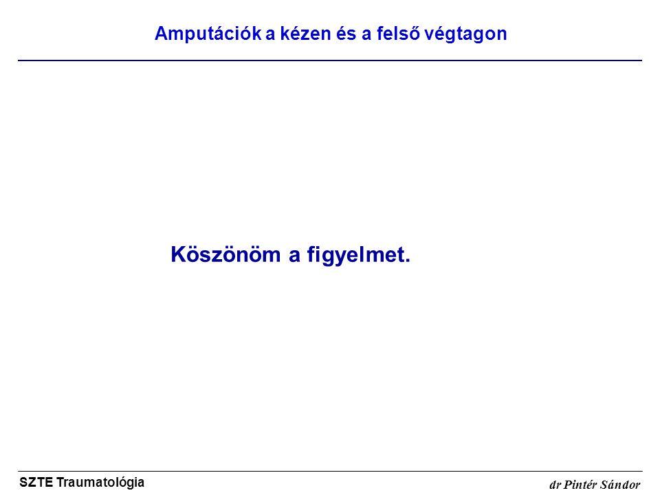 Amputációk a kézen és a felső végtagon SZTE Traumatológia dr Pintér Sándor Köszönöm a figyelmet.