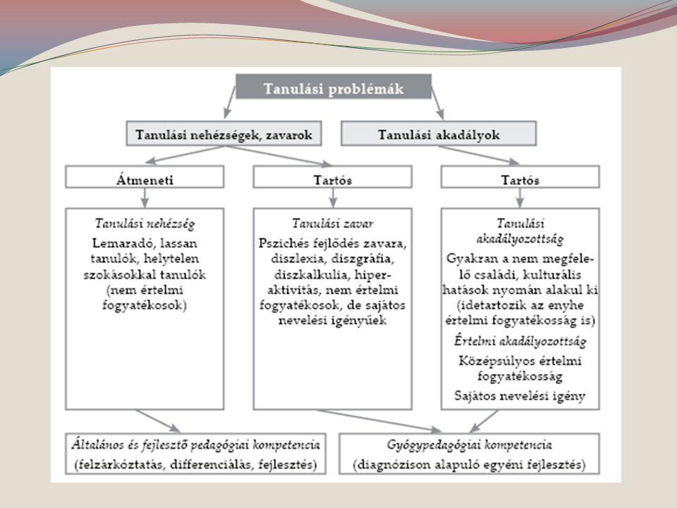 Az iskolai fejlesztés alapja a pontos diagnózis.