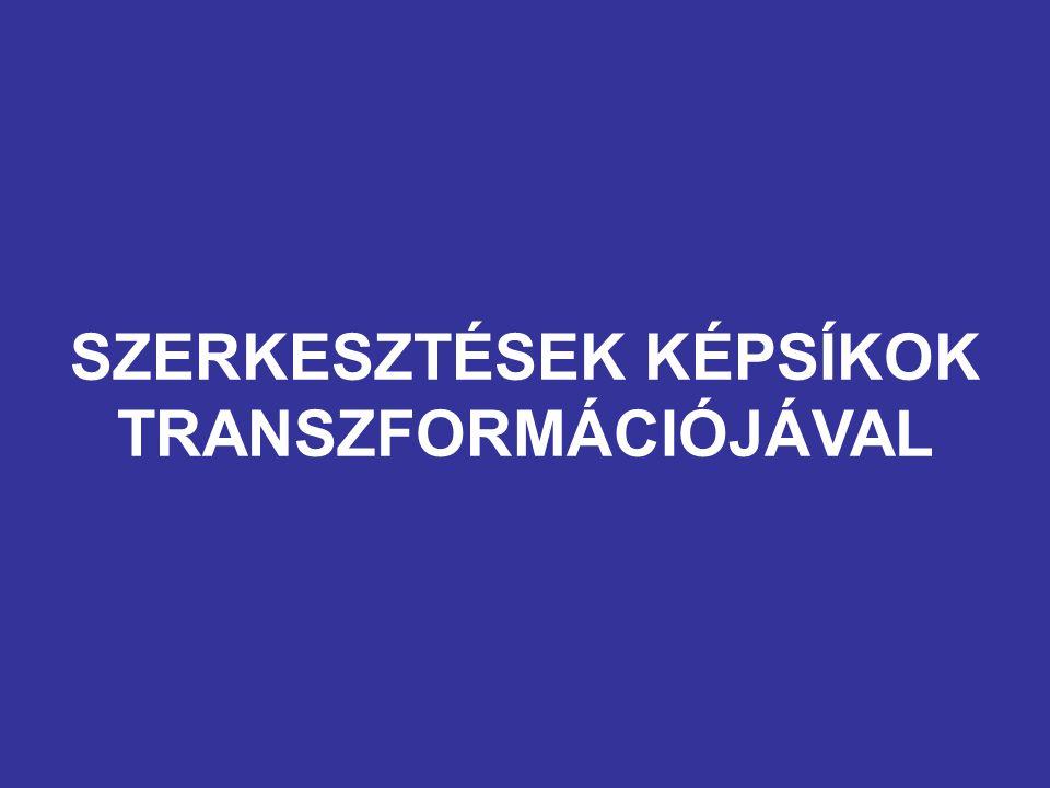 SZERKESZTÉSEK KÉPSÍKOK TRANSZFORMÁCIÓJÁVAL