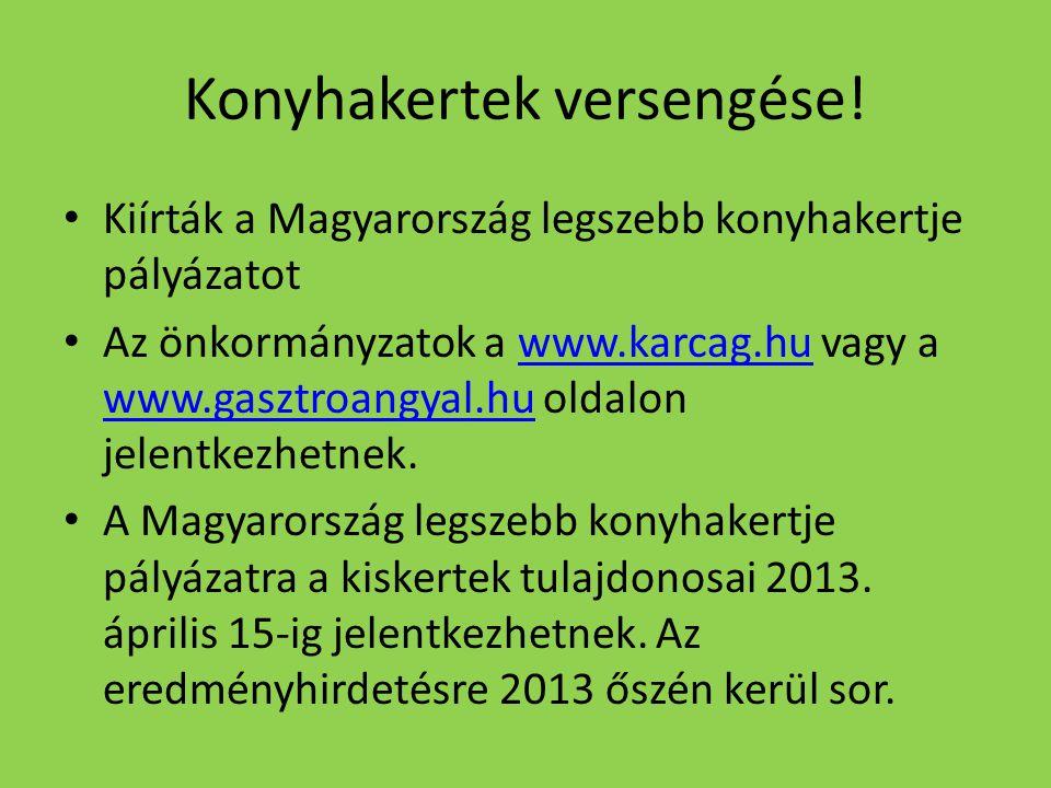 Konyhakertek versengése! Kiírták a Magyarország legszebb konyhakertje pályázatot Az önkormányzatok a www.karcag.hu vagy a www.gasztroangyal.hu oldalon