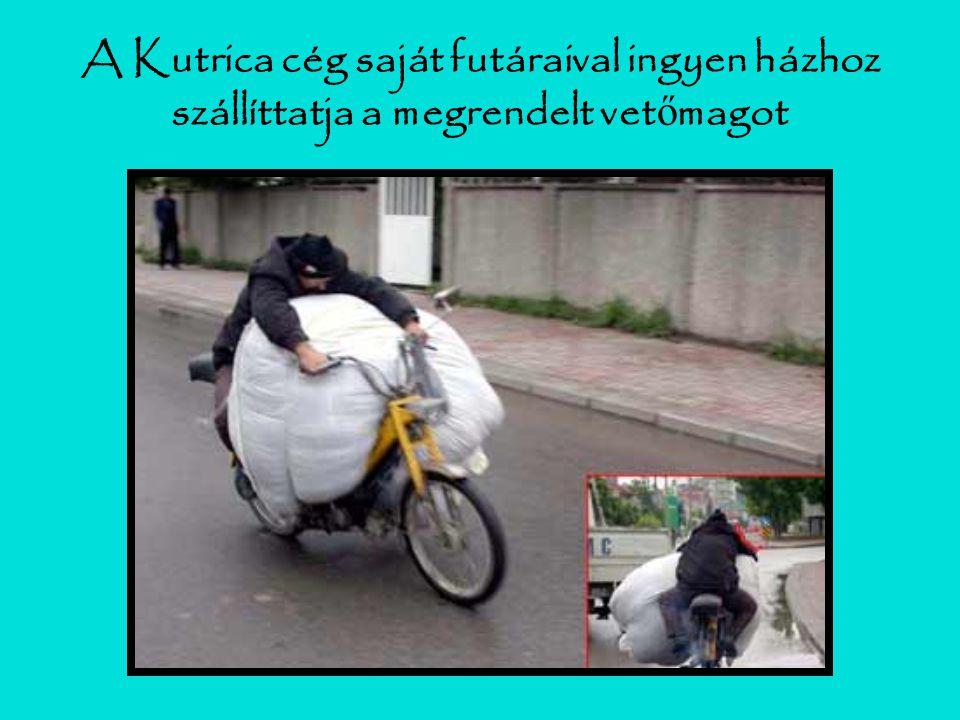 A Kutrica cég saját futáraival ingyen házhoz szállíttatja a megrendelt vet ő magot