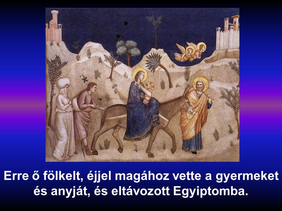 Erre ő fölkelt, éjjel magához vette a gyermeket és anyját, és eltávozott Egyiptomba.