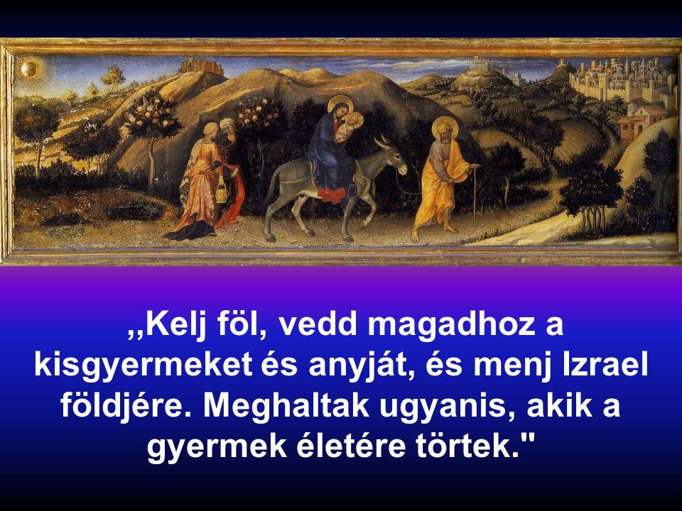 Ő fölkelt, maga mellé vette a kisgyermeket és annak anyját, és bement Izrael földjére.