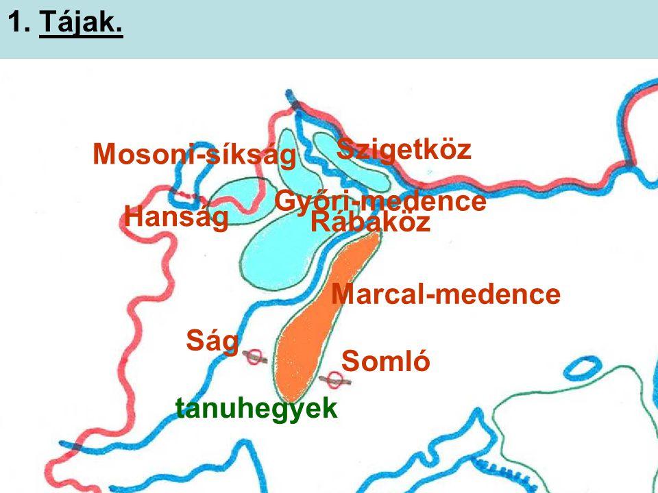 Szigetköz Mosoni-síkság Hanság Rábaköz Győri-medence Marcal-medence Ság Somló tanuhegyek 1. Tájak.