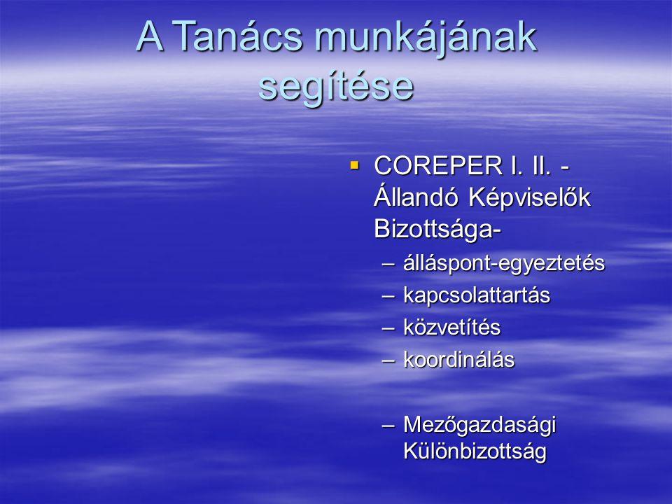 A Tanács munkájának segítése  COREPER I. II.