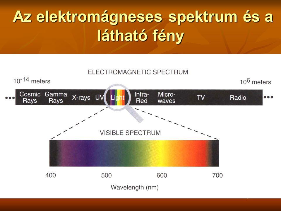 Az elektromágneses spektrum és a látható fény Az elektromágneses spektrum és a látható fény