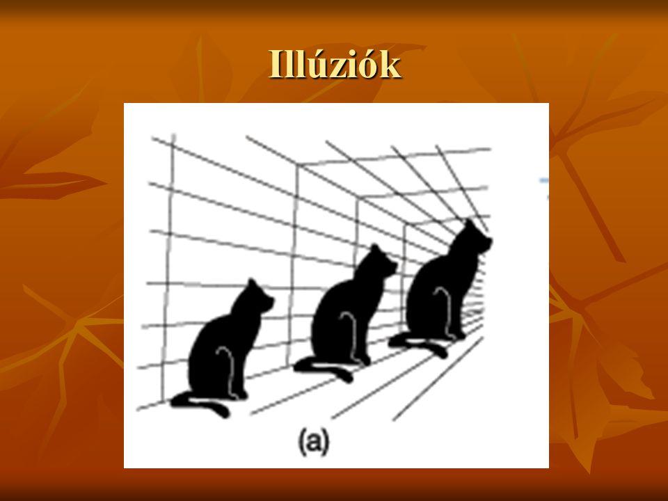 Illúziók