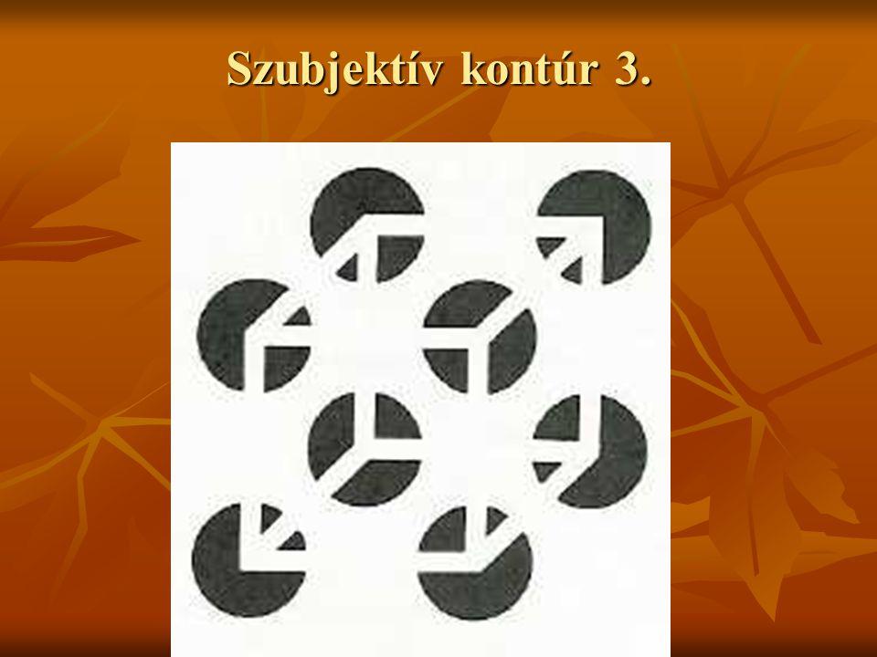 Szubjektív kontúr 3.