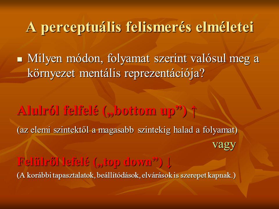 A perceptuális felismerés elméletei Milyen módon, folyamat szerint valósul meg a környezet mentális reprezentációja? Milyen módon, folyamat szerint va