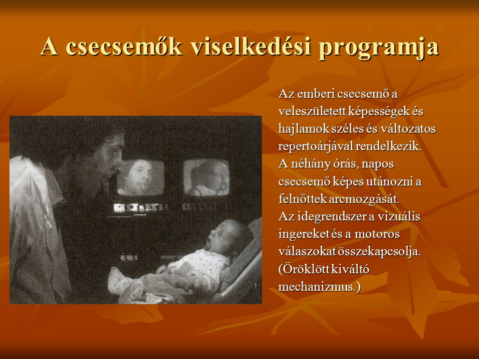 A csecsemők viselkedési programja Az emberi csecsemő a veleszületett képességek és hajlamok széles és változatos repertoárjával rendelkezik.