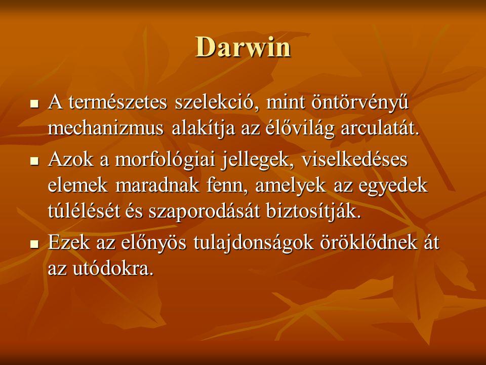 Darwin A természetes szelekció, mint öntörvényű mechanizmus alakítja az élővilág arculatát.