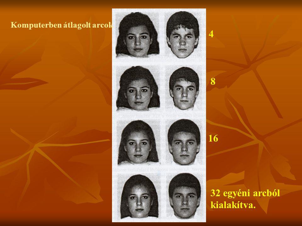 Komputerben átlagolt arcok 4 8 16 32 egyéni arcból kialakítva.