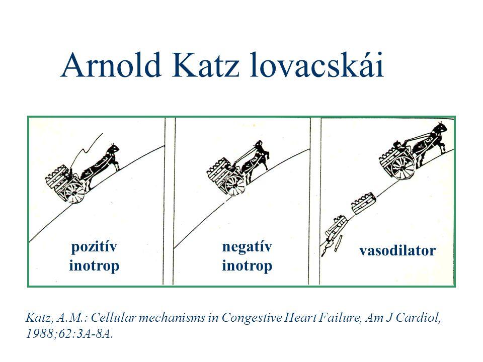 Arnold Katz lovacskái pozitív inotrop negatív inotrop vasodilator Katz, A.M.: Cellular mechanisms in Congestive Heart Failure, Am J Cardiol, 1988;62:3