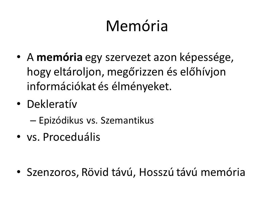 Memória A memória egy szervezet azon képessége, hogy eltároljon, megőrizzen és előhívjon információkat és élményeket. Dekleratív – Epizódikus vs. Szem