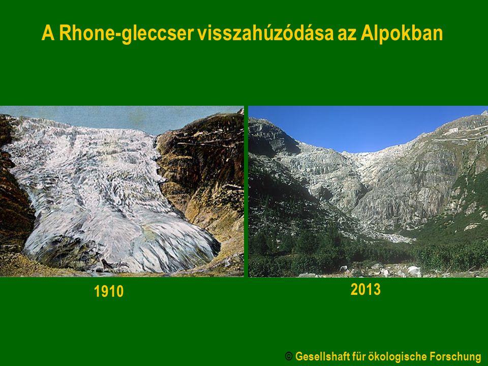 A Rhone-gleccser visszahúzódása az Alpokban 1910 2013 © Gesellshaft für ökologische Forschung
