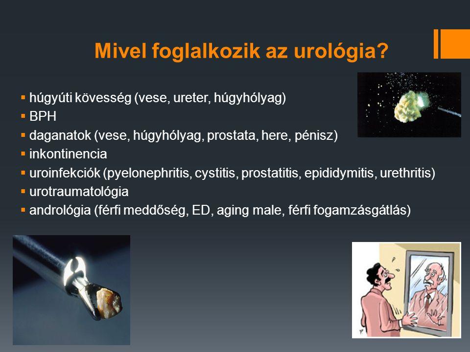 Mivel foglalkozik az urológia?  húgyúti kövesség (vese, ureter, húgyhólyag)  BPH  daganatok (vese, húgyhólyag, prostata, here, pénisz)  inkontinen