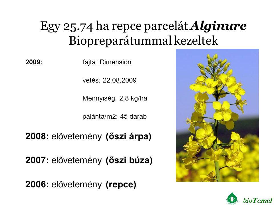 Egy 25.74 ha repce parcelát Alginure Biopreparátummal kezeltek 2009: fajta: Dimension vetés: 22.08.2009 Mennyiség: 2,8 kg/ha palánta/m2: 45 darab 2008