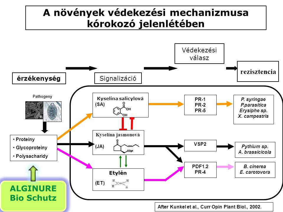 Pathogeny érzékenység Védekezési válasz rezisztencia Kyselina salicylová (SA) Kyselina jasmonová (JA) P. syringae P.parasitica Erysiphe sp. X. campest