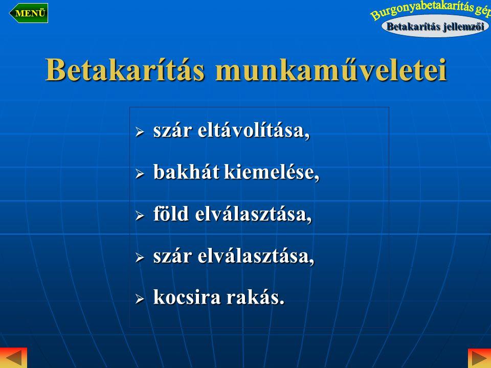 Burgonyaszár eltávolítása Egyes fajták szármagassága 0,8-1,2 m lehet és tömege elérheti a 20-25 t/ha.