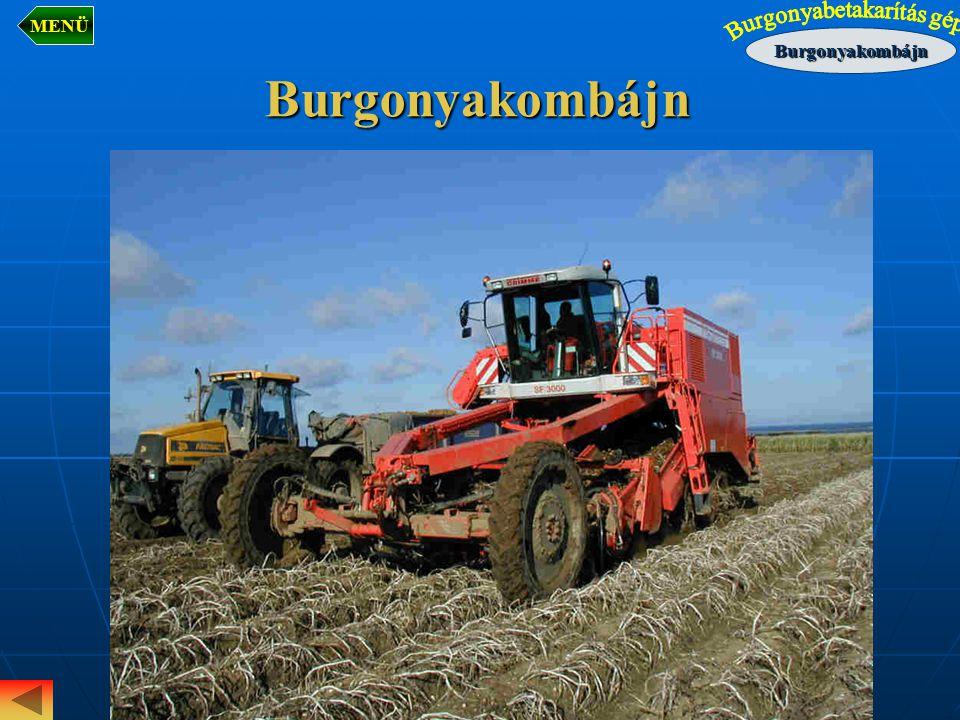 Burgonya osztályozás eszközei HengerrostaSíkrosta Étkezési burgonya 2.