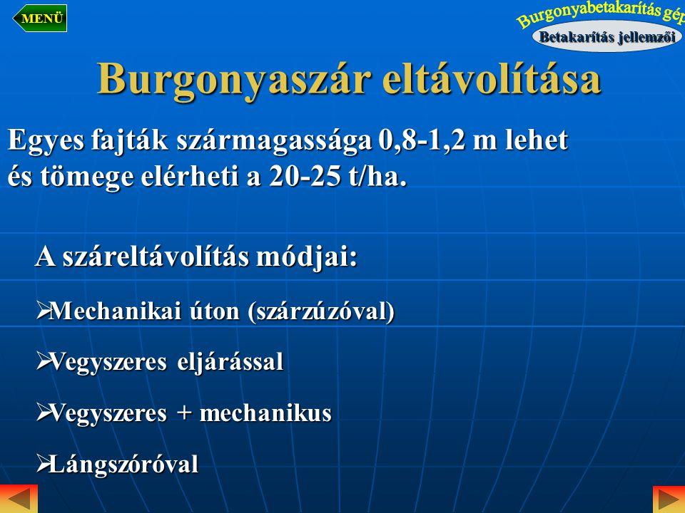 Burgonyaszár eltávolítása Egyes fajták szármagassága 0,8-1,2 m lehet és tömege elérheti a 20-25 t/ha. A száreltávolítás módjai:  Mechanikai úton (szá